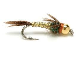 Flyfishing Arizona