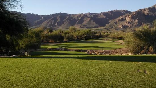 Arizona Golf