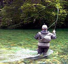 Fly Fishing Guides in AZ